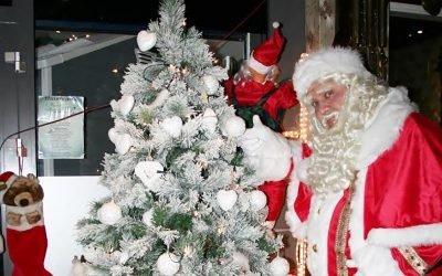 Iedereen een gezellig kerstfeest en een mooi 2016